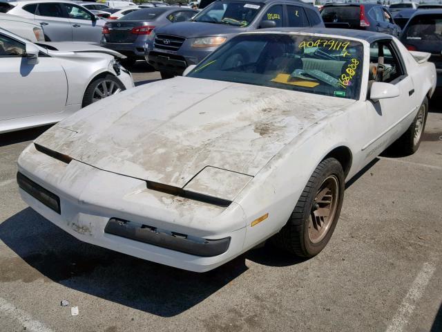 Pontiac Firebird for Sale