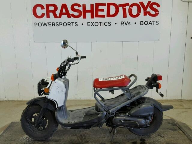 Honda Nps50f for Sale