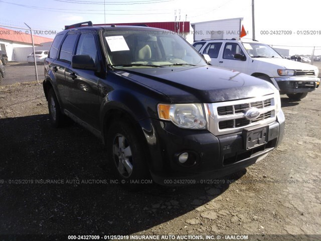 Ford Escape For