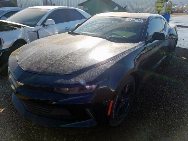 Chevrolet Camaro for Sale